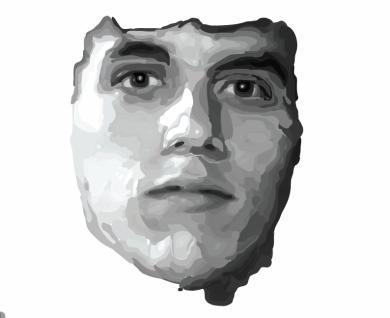 Illustrator WIP