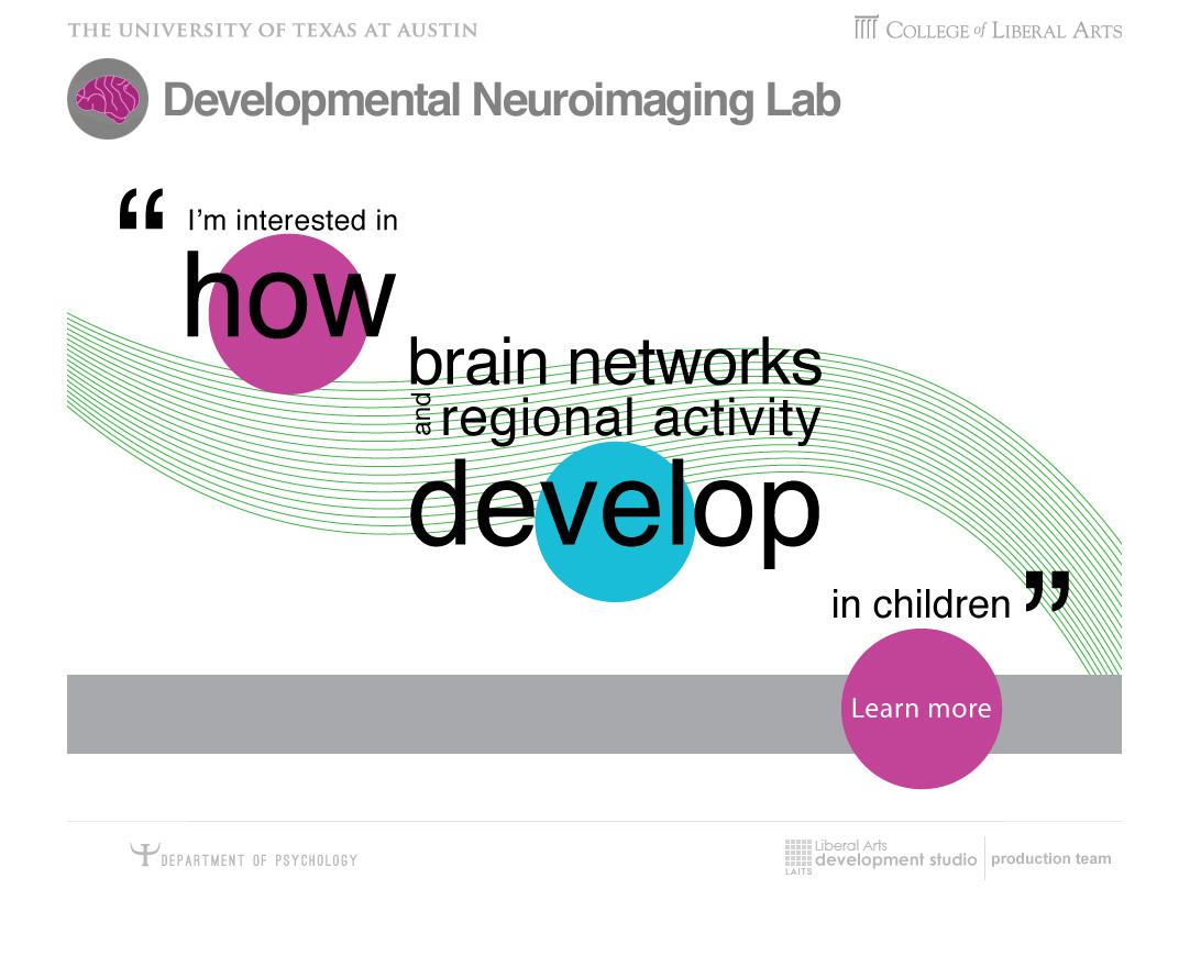Developmental Neuroimaging Lab - Mockup