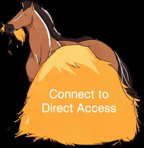 horse button-01