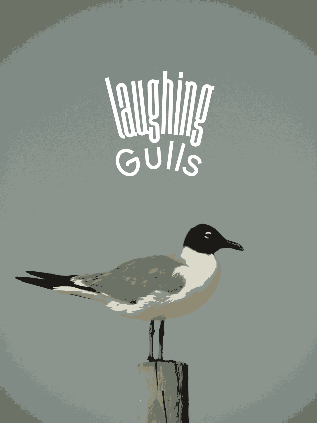 seagull image with image tracing